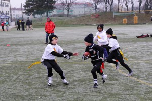 Chevalier Bowl 16 2016-12-17-10h59m50