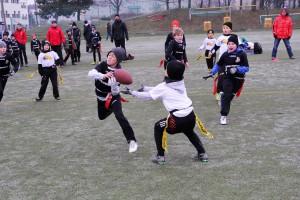 Chevalier Bowl 16 2016-12-17-11h09m06
