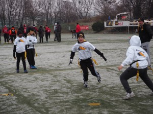 Chevalier Bowl 16 2016-12-17-11h24m14